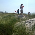 July: Dune vegetation surveys with Barrier Island Geology and Ecology class.